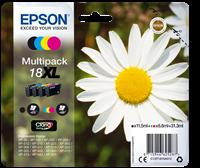 Multipack Epson T1816
