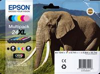 Multipack Epson T2438